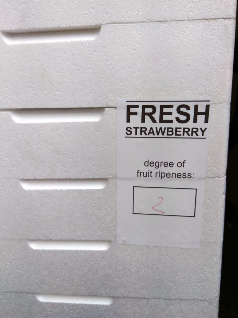 www.strawberry.expert (8)