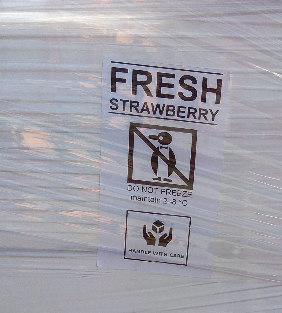 www.strawberry.expert (11)
